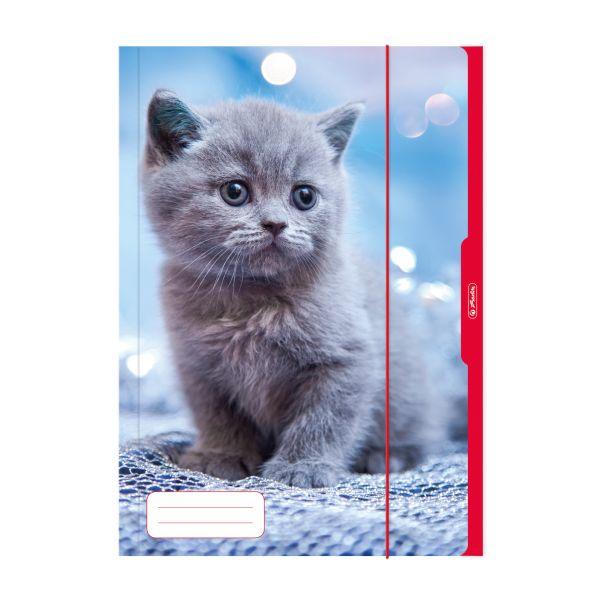 Desky A3 Kočka