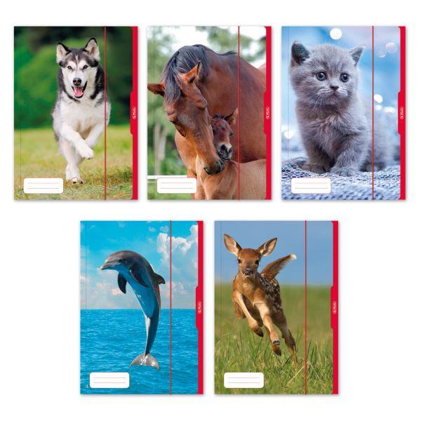 Desky A3 Zvířata