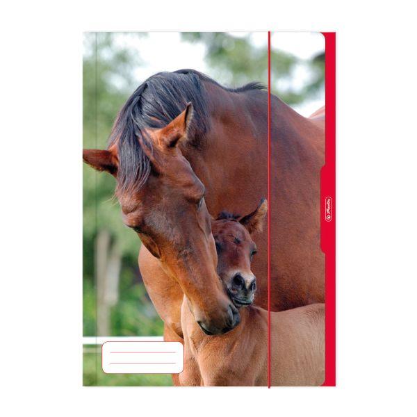 Папка с резинкой А3 Лошадь